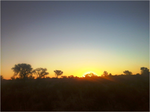 Kalahari sunsets to die for