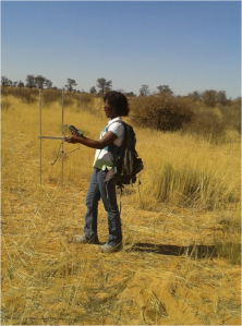 Kea tracking