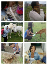 Despite it all, I vow to love all animals (ok, most animals) the best way I know how, till death do us part.