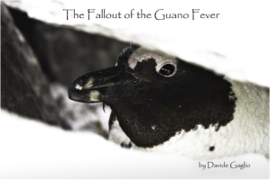 guano fever