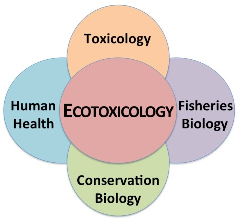 Ecotoxicology crosses disciplines