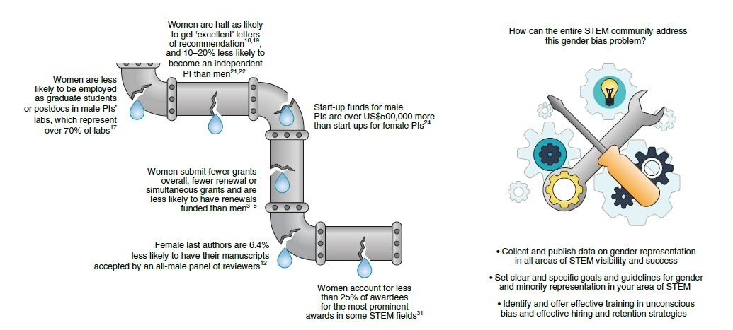 leakey pipeline